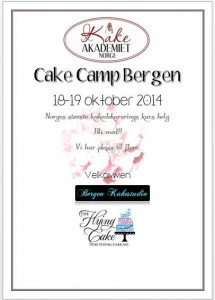 Cake Camp 1